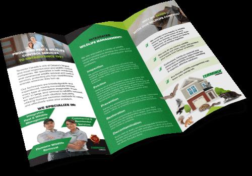 terminix-brochure-design